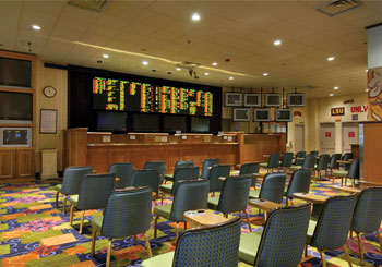 Race & Sports Book