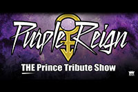 Purple Reign | The Prince Tribute Show