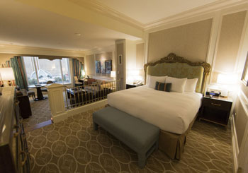 The Venetian Resort Hotel & Casino hotel slideshow image 7