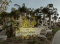 Palm Canyon Resort Image