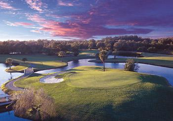 Innisbrook Golf Resort hotel slideshow image 22