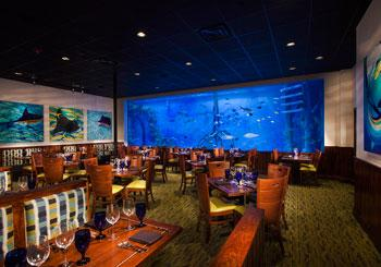 Guy Harvey Outpost hotel slideshow image 5