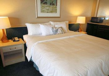 Executive Inn & Suites Embarcadero Cove hotel slideshow image 7